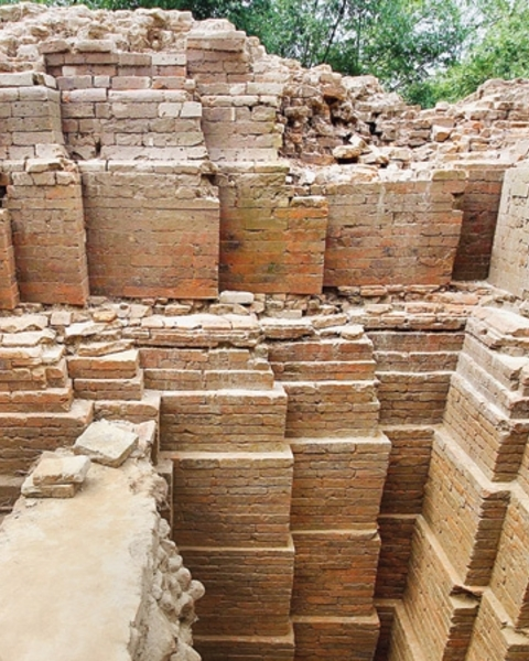 A rare Vishnu temple with a unique 'nava-ratha' architecture has been excavated at Madhabgaon village in Kaharol upazila of the northern district of Dinajpur by a team of archaeologists from Jahangirnagar University. This photo was taken recently.