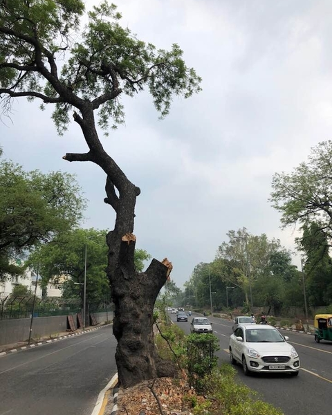 Bare Mathura Road, Delhi on 29th July 2018