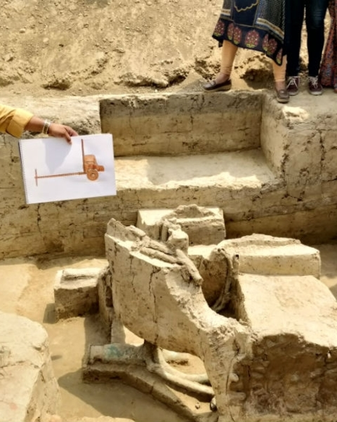 Director SK Manjul from ASI showing the chariot from the excavation site at Sanauli in Uttar Pradesh.