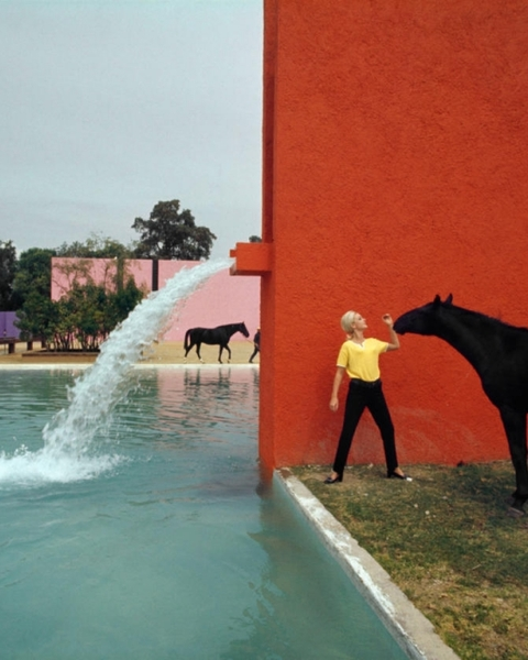 Cuadra San Cristóbal, in Mexico City, designed by the architect Luis Barragán, whose cremated ashes the artist Jill Magid turned into a diamond.