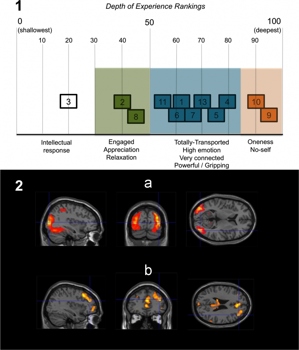 Fig. 3.  'Depth of Experience' ratings and fMRI regression analyses for Experimental block.