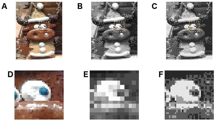 Language as a gingerbread reindeer: the two B/W versions use different resolutions and number of gray levels but encode the same info, just as languages trade off different strategies but are equally efficient