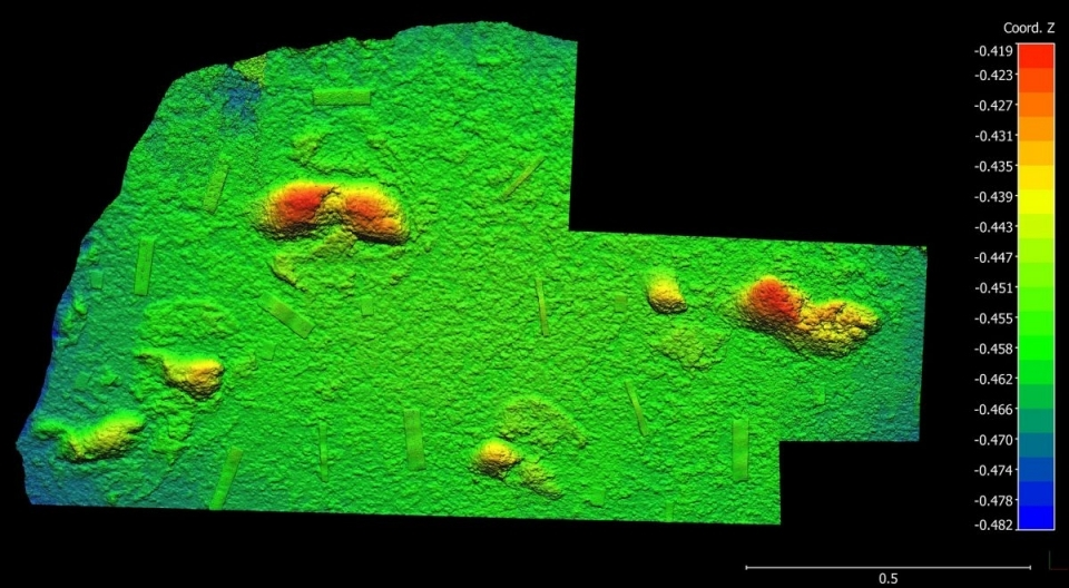 Hours of 3D photogrammetry work reveal the tracks of ancient humans on the South African coast.