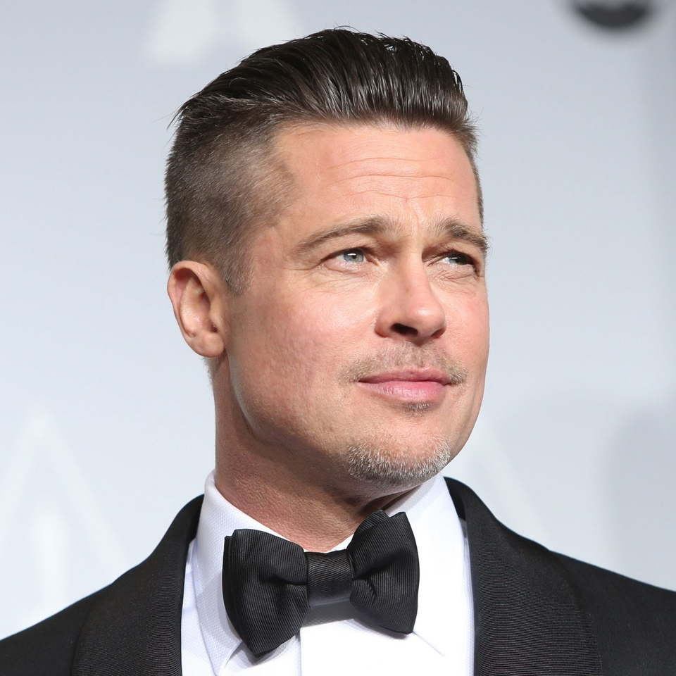 Brad Pitt championed Peter Zumthor's design at the LACMA's hearing
