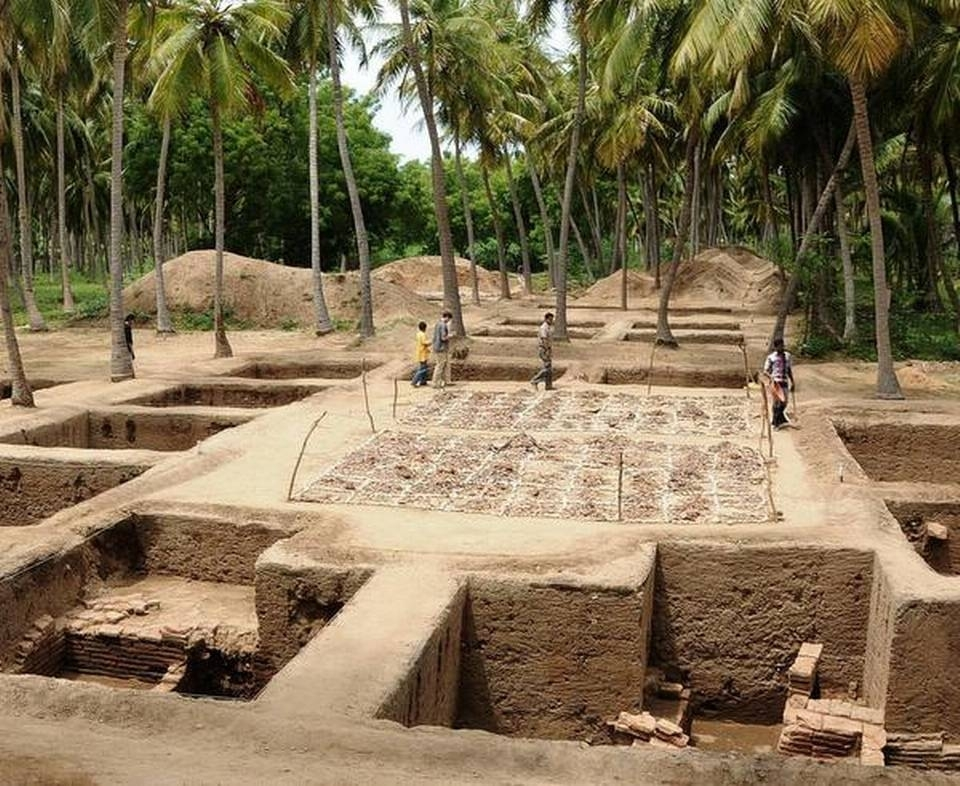 An overview of the excavated trenches in a coconut plantation at Keezhadi with a pottery yard in the middle.