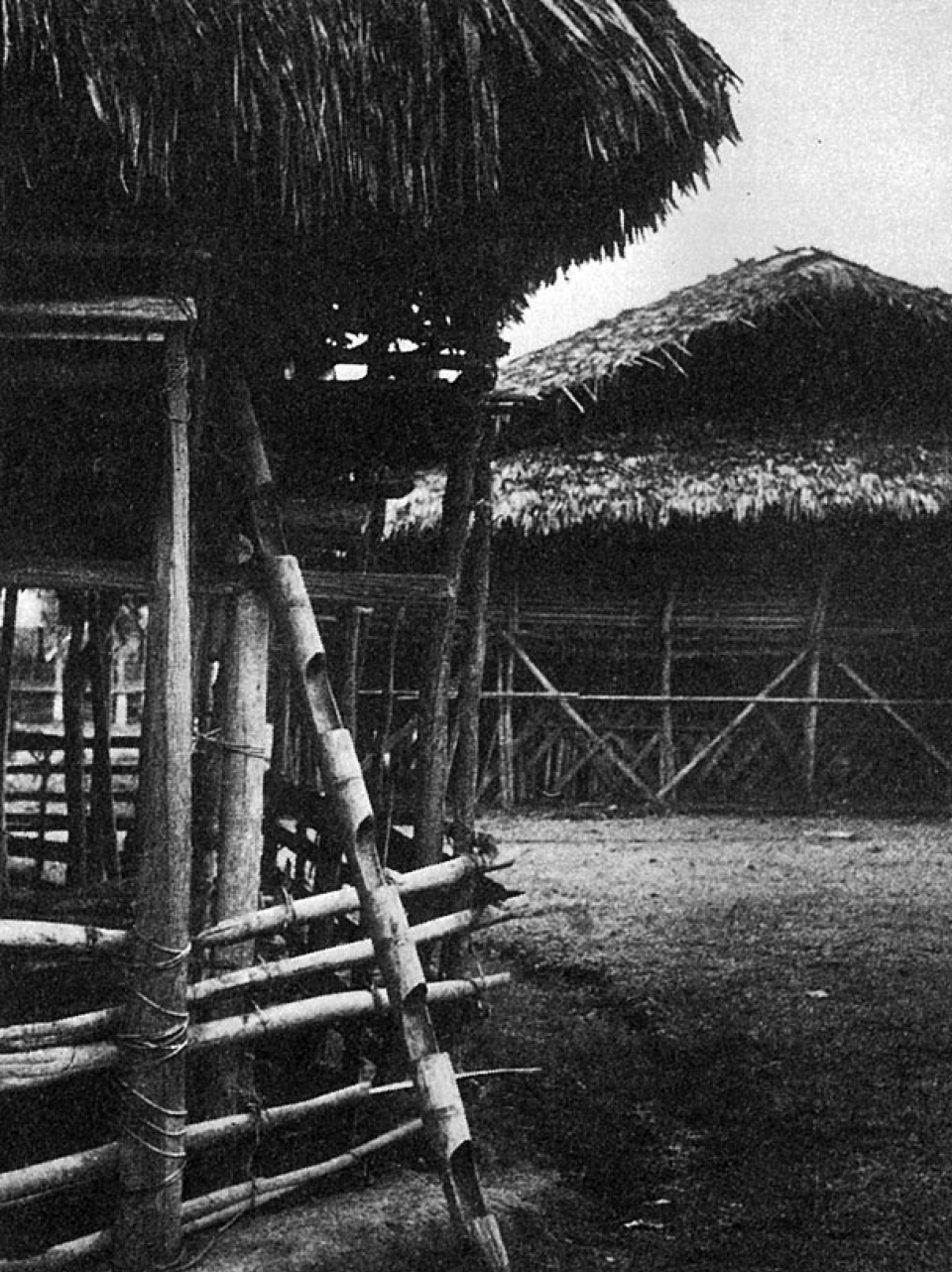 Typical hill house is built on stilts. Bamboo is used with great ingenuity – single notched pole serves as a ladder.
